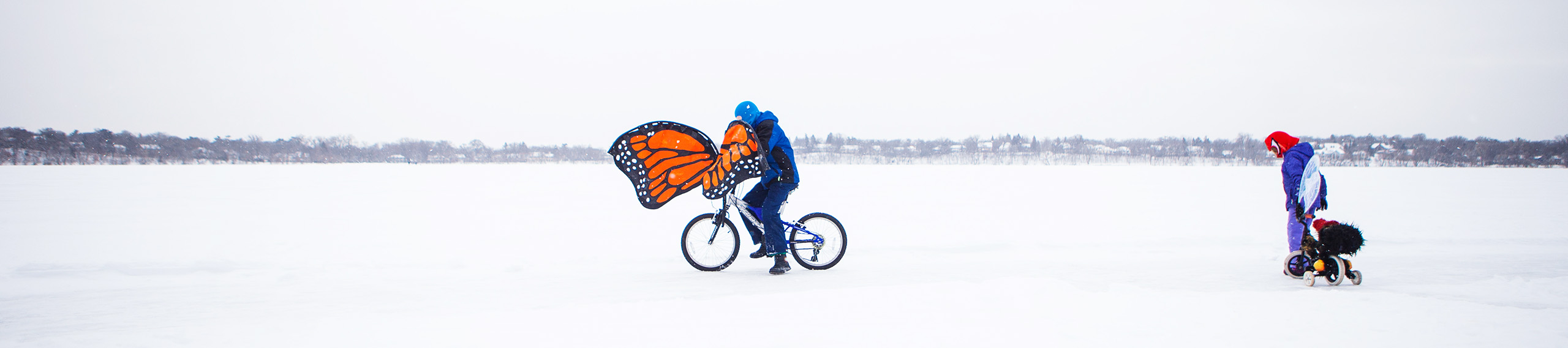 Panorama of two cyclists against a stark whiteout landscape. The first bicyclist has big monarch wings attached to their handlebars and the other wears translucent wings and drags a tiny tricycle behind them.